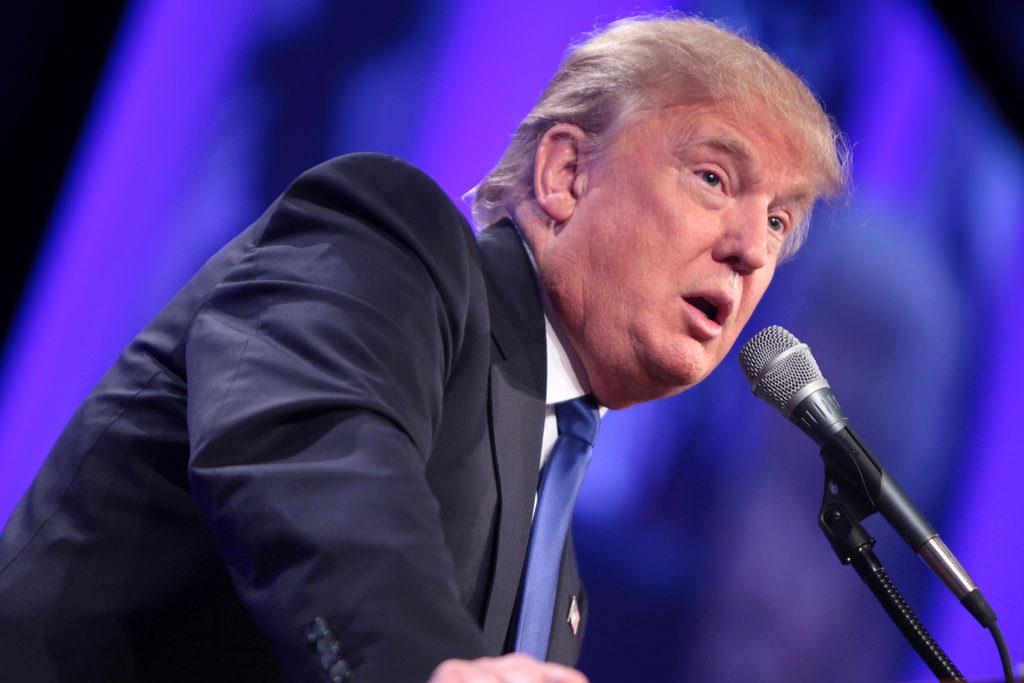 Trump Loves Lies