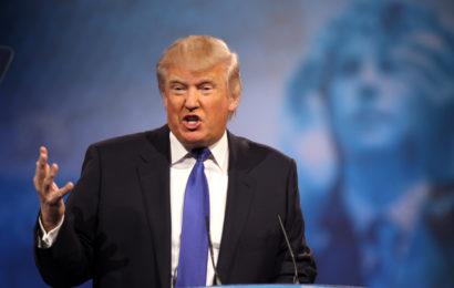 Trump's Keystone Pipeline Greenlight Moves Plan to Destroy the Environment Forward