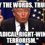 Trump won't say radical right wing terror